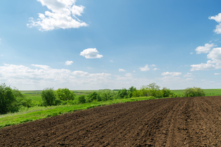 농작물 수확량 좌우하는 미량요소