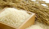 쌀 목표가격 기준 80kg에서 1kg으로 변경 추진