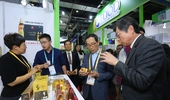aT, '제2회 중국국제수입박람회' 참가