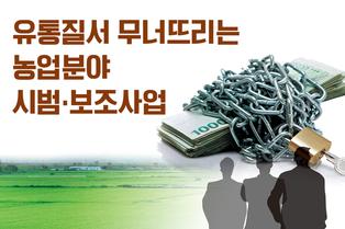 유통질서 무너뜨리는 농업분야 시범·보조사업