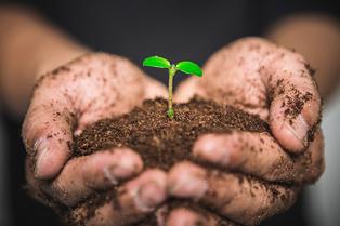 토양과 작물 생육에 도움을 주는 '비료'